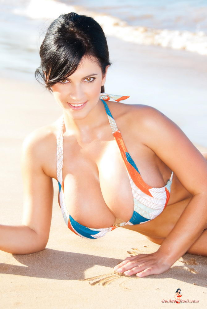 Denise Busty Beach Babe - Denise Milani 9 / 17 | Babes and Bitches
