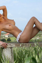 On The Field Bench 02